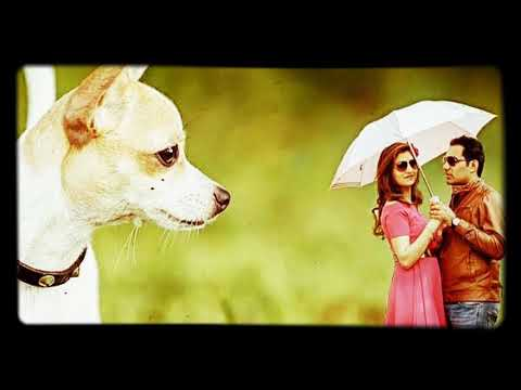Best Love Ringtone Ever .. Main Si Sidha Sadha Banda..  Love Song..