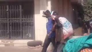 Mali: Un vendeur de viande d'âne arrêté par la police