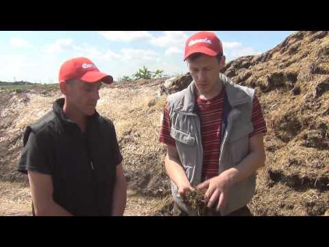 Рационы кормления коров. Фермерское хозяйство