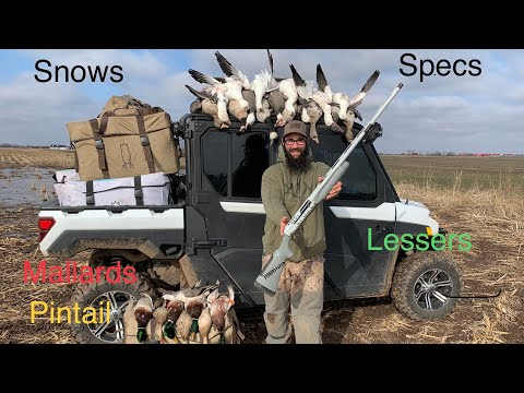Epic last Duck Hunt of the Season!!! Incredible Mixed Bag!