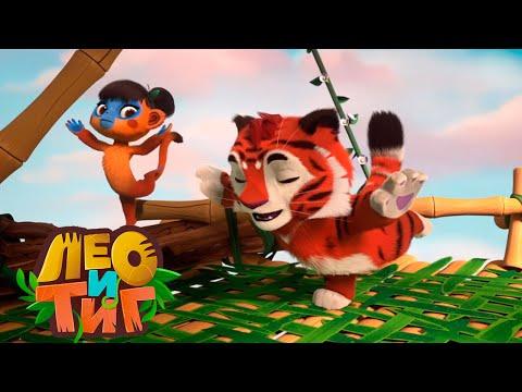 Лео и Тиг — Веселый казуар — Серия 33