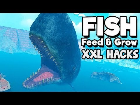 Feed and Grow Fish Gameplay German - SPERM WHALE unendlich groß thumbnail