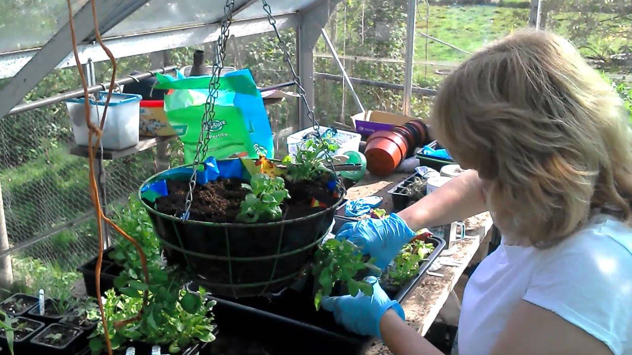 Youtube Hanging Flower Baskets : Make a hanging basket with sandra flower lady
