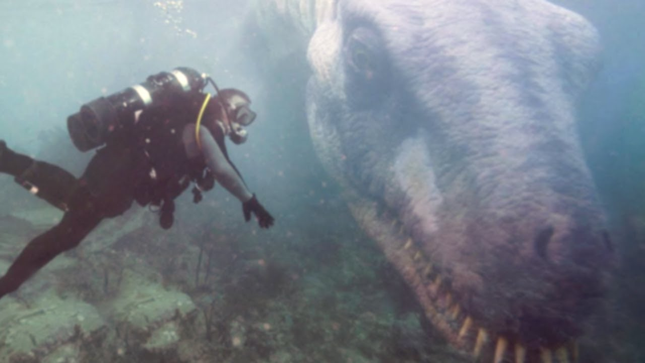 Download 15 Terrifying Discoveries That Nearly Stopped Divers Hearts