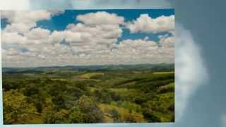 Commercial Farms And Farmland For Sale In Bahia Brazil