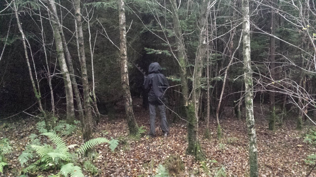 Image result for creepy house in the woods