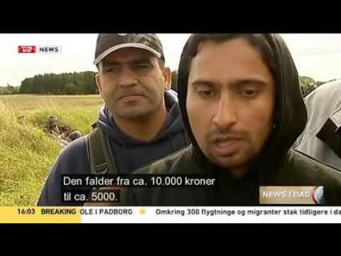Why migrants / refugees want Sweden and not Denmark