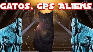 Los gatos son GPS alien regalo de los anunnaki a los faraones