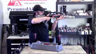 Hatsan 125 Sniper .25 Cal Airgun Review - Amazing power and accuracy!