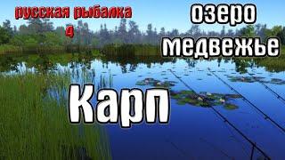 Русская рыбалка 4 рр4 rf4 озеро Медвежье Карп