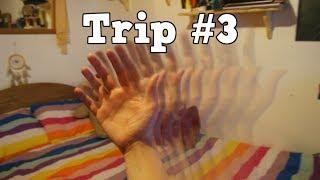Mon trip sous champignons hallucinogènes #3