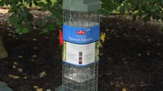 Perky-pet® Evenseed™ Squirrel Dilemma Bird Feeder Instructional Video | Bird Feeder