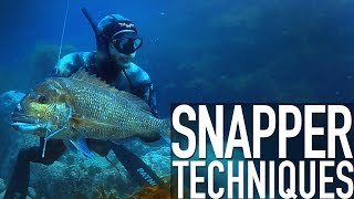Techniques for Spearfishing Snapper - Trailer