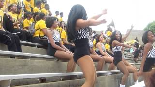 "ASU Stingettes ""Jamaica Funk"" (Black & Gold)"