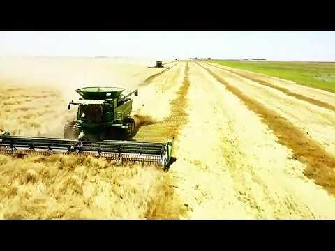 Danielski Farms Harvest Run 2017 Movie