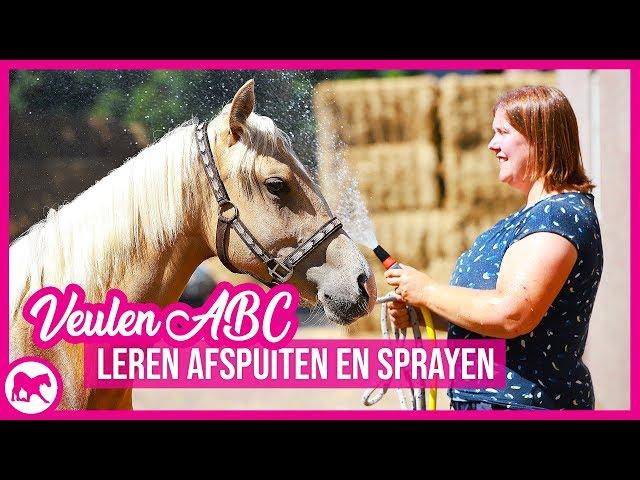 VeulenABC - Leren afspuiten en sprayen