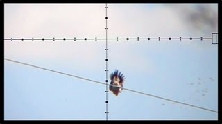 Repeat youtube video 100 Yard Dove Shot - Dove Hunting with Edgun Matador PCP Air Rifle (Nov 6, 2011)
