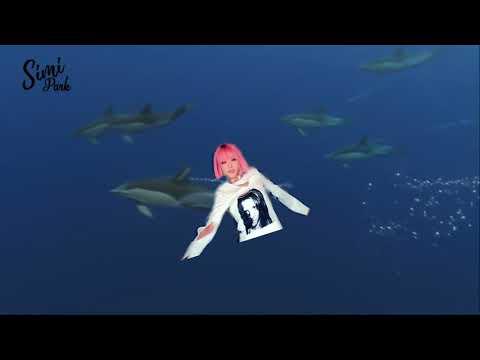 BLACKPINK Jisoo Shooting Star Meme LOL