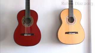 Tips: How the Size Top affects Performance / Ruben Diaz Andalusian Flamenco Guitar Magazine Q & A