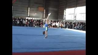 спортивная гимнастика 1 разряд вольные