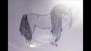 Unicorn Speed Draw
