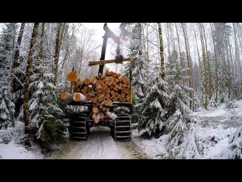 EcoLog harvester - forest felling in Seutula Finland