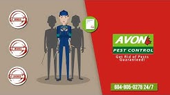 Avon Pest Control Vancouver | Bed Bug Exterminator