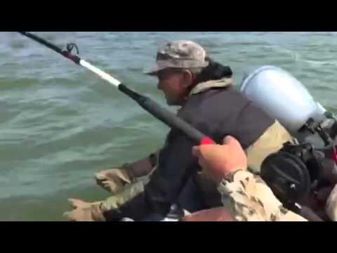 рыбалка в ростовской области на сома