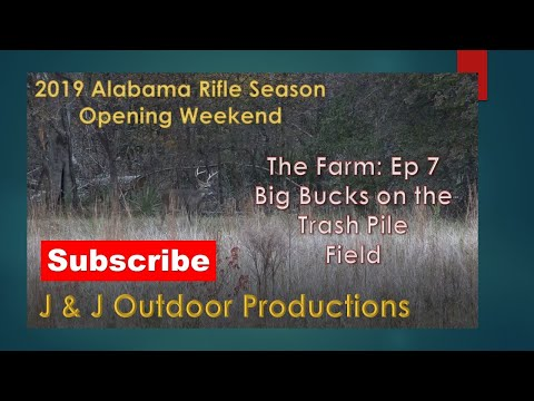 Alabama Rifle Season Opening Weekend 2019 - Big Bucks On The Trash Pile Field!