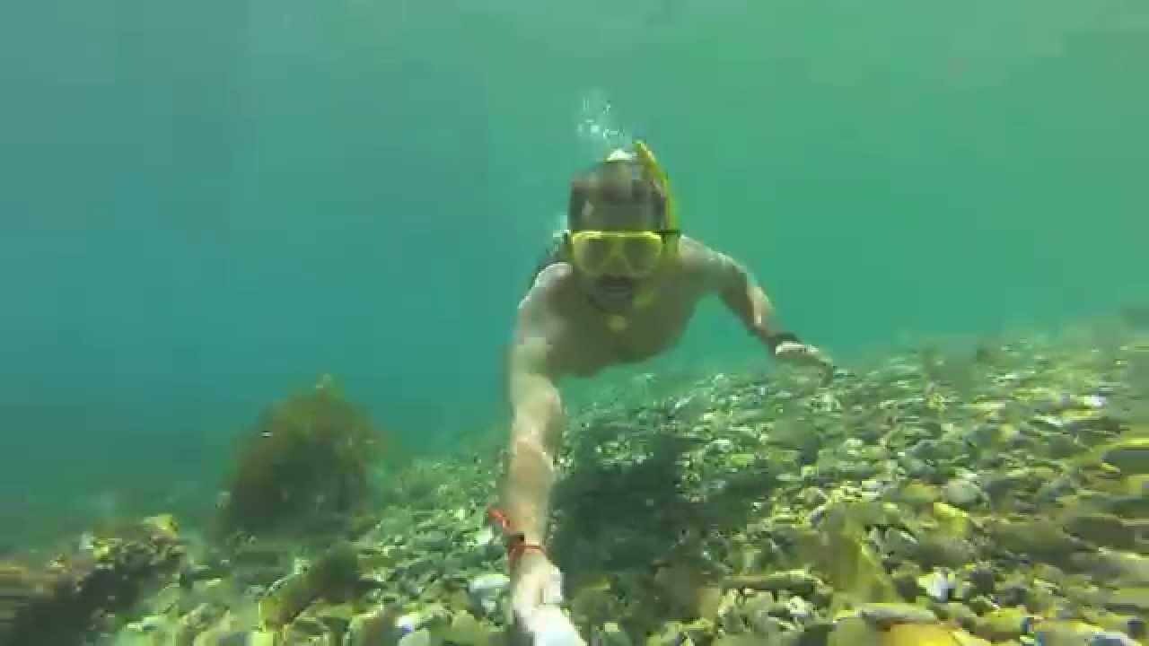 Catalina Island Descanso Beach Snorkeling