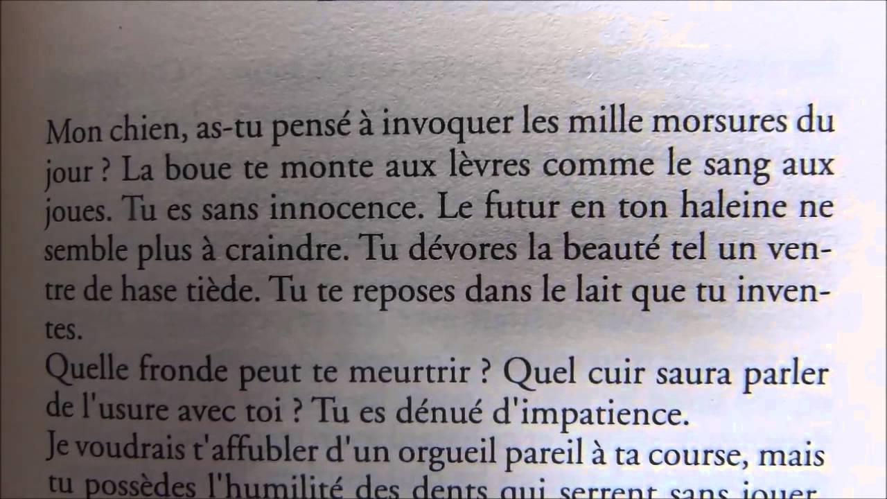 Un Poème épître De Carl Norac Essai De Traduction En Anglais