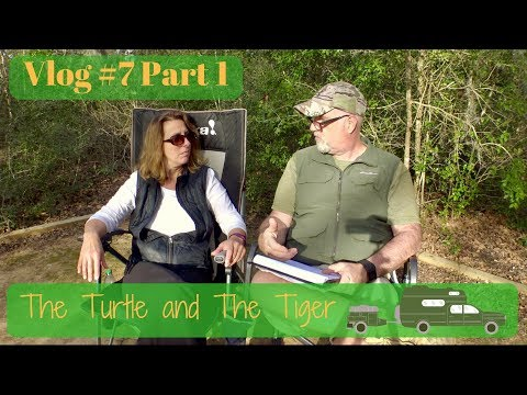 Videos | YouTube Videos | The Turtle & The Tiger
