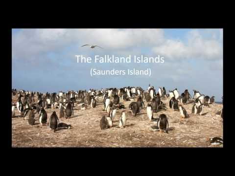 VENT & Zegrahm Expeditions present Antarctica, South Georgia & the Falkland Islands 2018