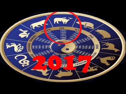Китайский гороскоп, восточный гороскоп, гороскопы