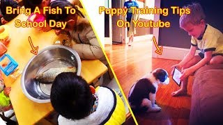 Kids Who Take Instructions Too Literally 「 funny photos 」
