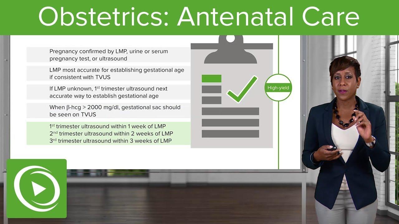 Antenatal Care – Obstetrics | Lecturio
