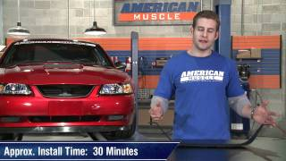 Mustang Mach 1 Style Grille Delete Bottom Lip (99-04 GT, V6) Review