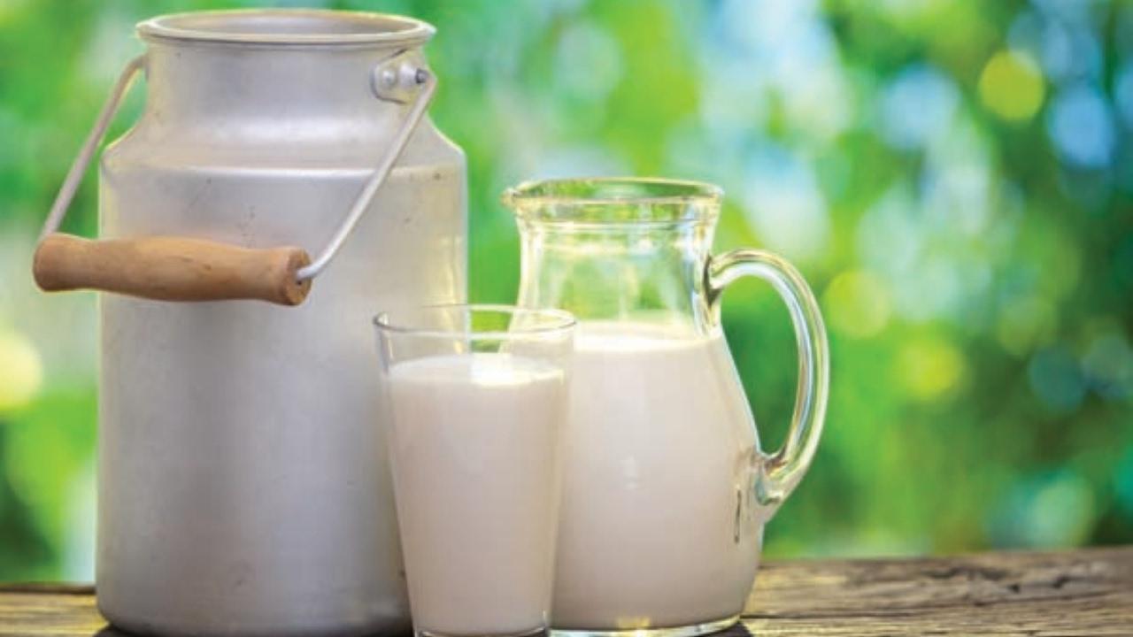 qual leite pode tomar na dieta cetogenica