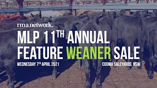 MLP 11th Annual Feature Weaner Sale, Wednesday 7th April 2021