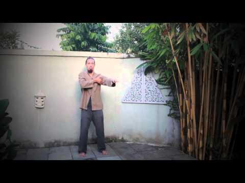 Training: Lymphatic Detox Qigong