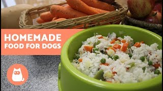 HOMEMADE FOOD for Dogs - Healthy food