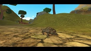 Turtle! [Farm World] - Roblox