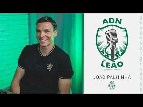 ADN de Leão   Episódio 18: João Palhinha
