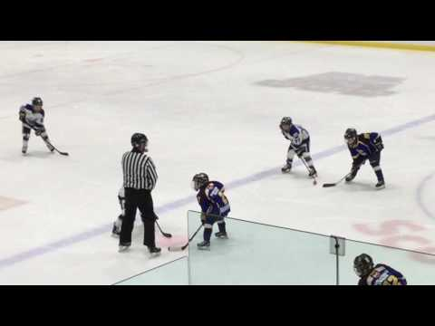 Central Ontario Wolves vs Whitby Wildcats - OMHA Gold Medal game - March 19, 2017