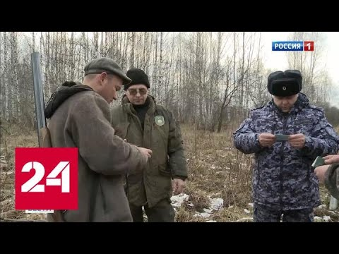 В Башкирии перенос сезона охоты не останавливает браконьеров - Россия 24