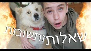 שאלות ותשובות עם הכלב החדש שלי!