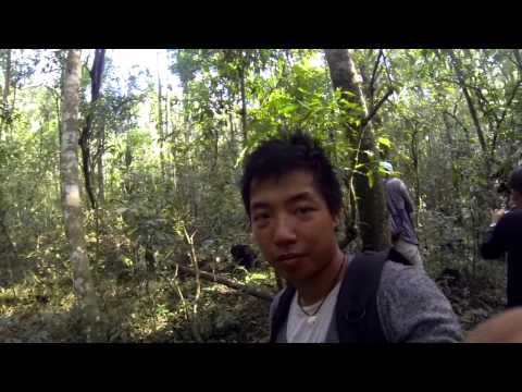 Africa Safari Travel with India sidetrip| GoPro Hero 3