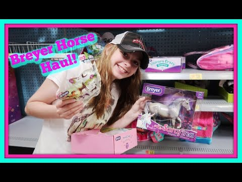 🐎BREYER HORSE HAUL! Skipping My Surgery And Shopping For Breyer Stablemates!🐴FIRST DAY TV🐎