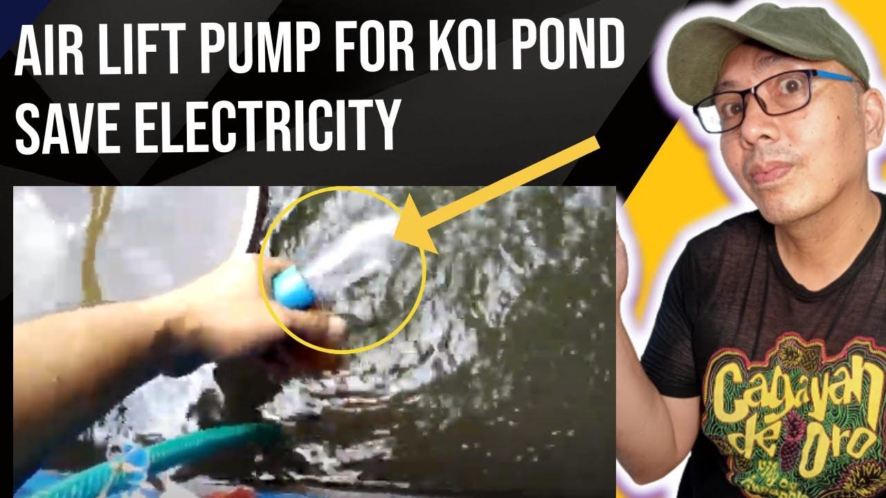 Diy Poormans Affordable Airlift Pump Filter Pond Youtube