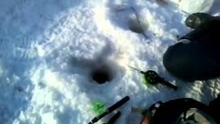 Ямал 2015 ловля мохтика на р.Ханупыяха(Это видео создано с помощью видеоредактора YouTube (http://www.youtube.com/editor), 2015-02-23T05:28:54.000Z)